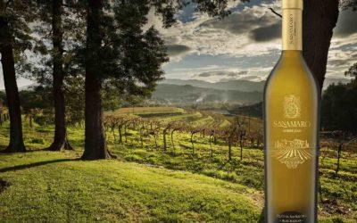 Wine Accolades – Pazo de San Mauro Sanamaro