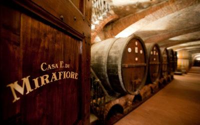 Winery Stories – Casa E. di. Mirafiore
