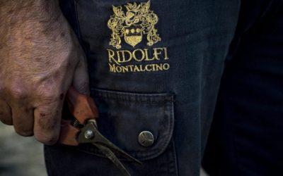 The Legend of Montalcino – Ridolfi